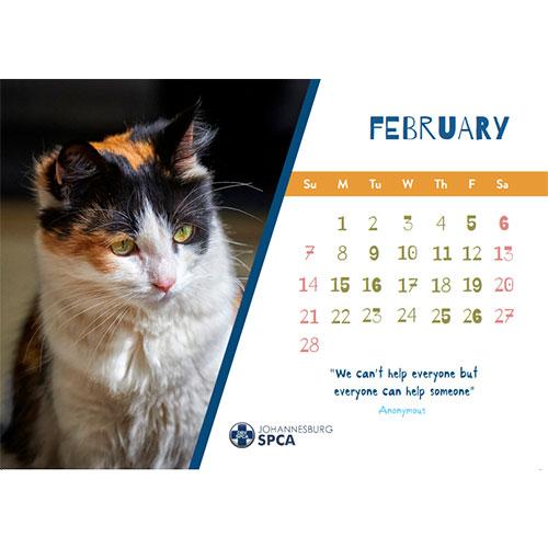 Johannesburg SPCA 2021 Calendar